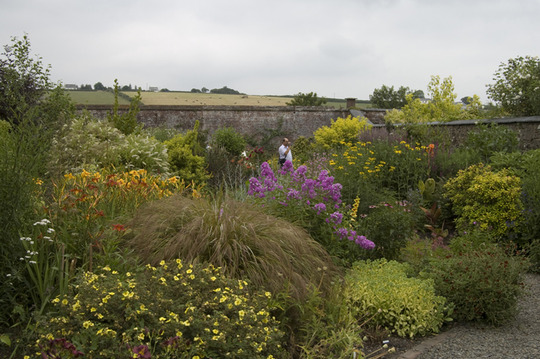 Herbaceous border at Winsford Walled Garden