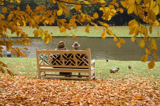feeding the ducks (feedustheduckus)