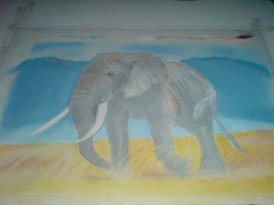 an elephant for amy