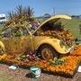 Gardening_scotland_09_105_