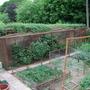 left hadn side of veg plot