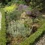 Front Garden rockery