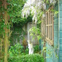 Garden_may_09_003