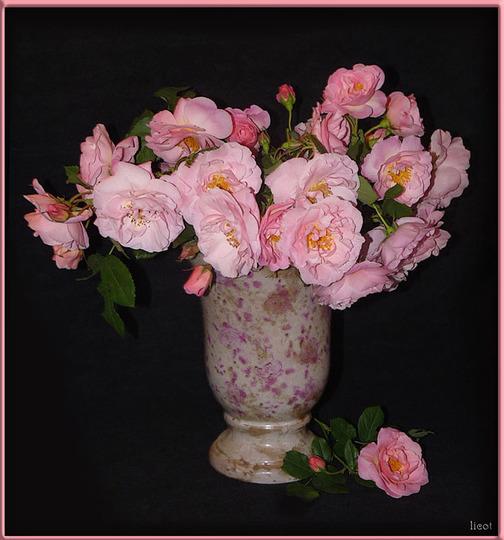 Fritz Nobis in a vase