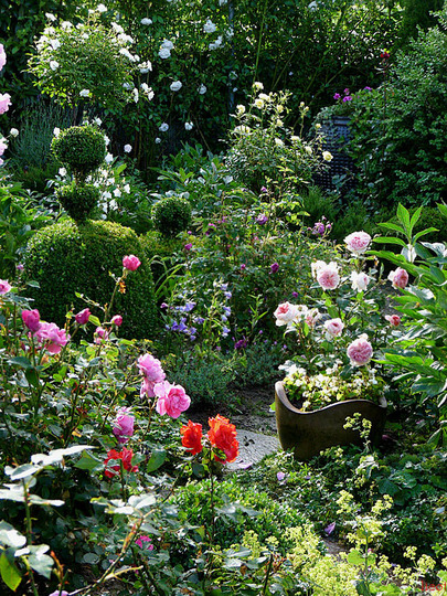 Another pic of the garden in June