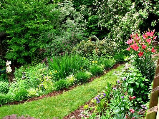 Side yard flowerbed