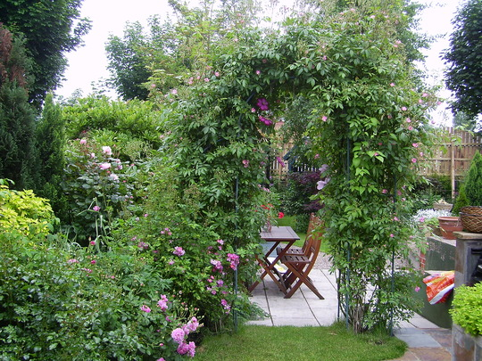 Rose Arch from the other angle looking down the garden