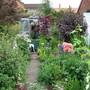Top of the garden