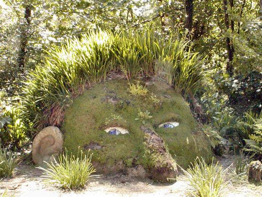 Heligan Gardens head