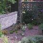 Gravel garden June