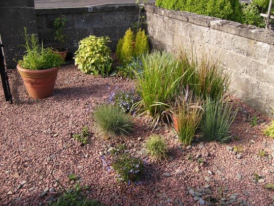 Gravel Garden in May