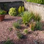 Gravel Garden in May