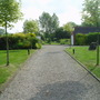 Driveway Leading To Pond & Mini Woodland
