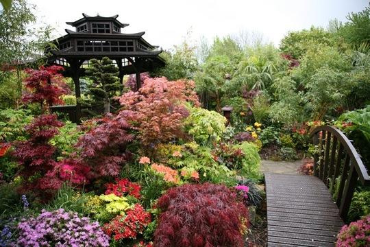 Oriental Pagoda May