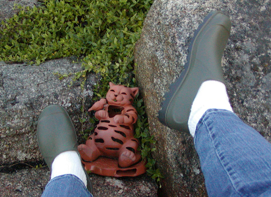 New low rider wellies from Wales