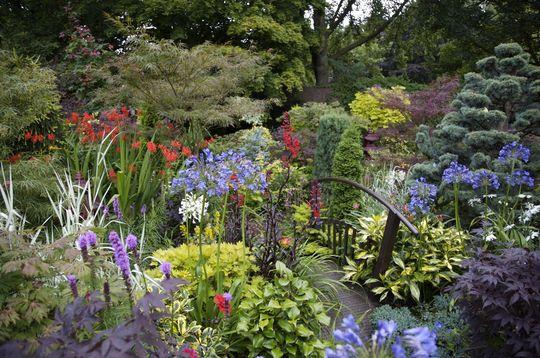 Lower Garden Summer