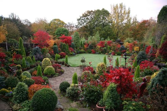 Autumn upper garden - 1st November 2007