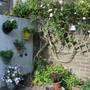 the triangle garden