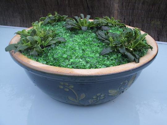 """Emerald City"" alpine planter"