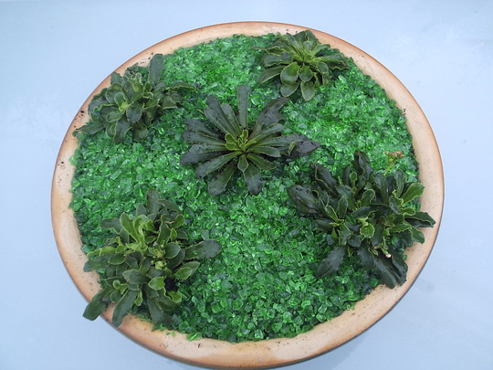 """Wzard of Oz"" Emerald City planter"