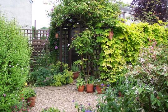Top right corner of garden