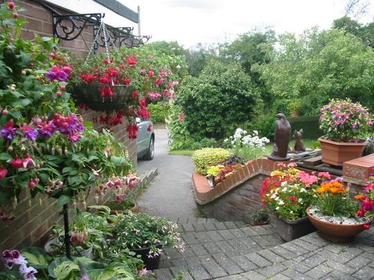 my july garden