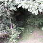 spinney path