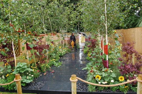 Small garden - Colour From the Garden
