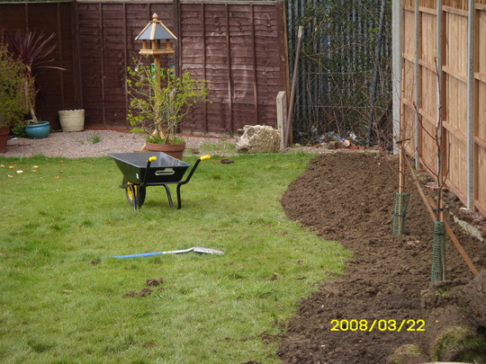 digging new borders in my garden