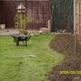 digging new borders in my garden