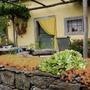 Small_garden_pepa_s_karst_garden