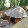 Part of tree house (Arboridomus)