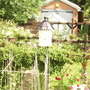 my dovecote