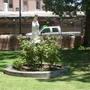 garden at San Felipe de Neri Church