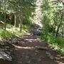 Crest Trail - Sandía Mountains