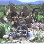 my garden (yuka)