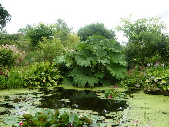 The Pond  Stockton Bury 2009