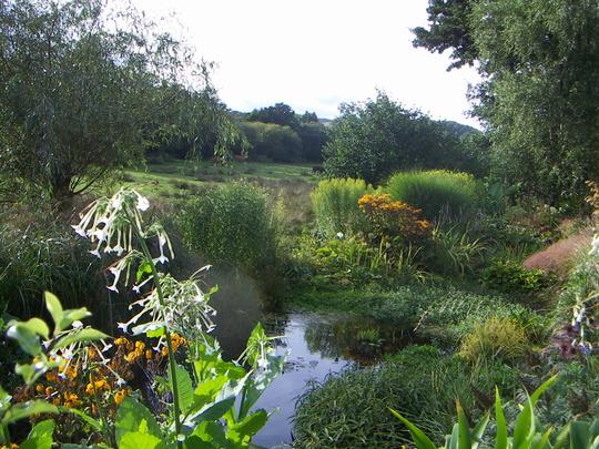 across pond