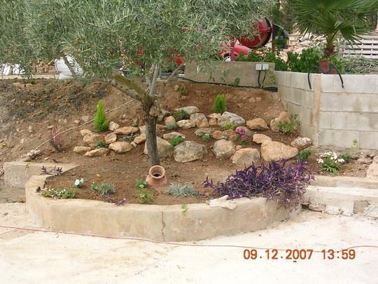 A few plants added