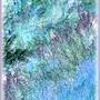 Wavesofwildgrass