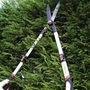 Lightweight Telescopic Shears