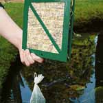 Refill Pond Pads