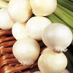 Pickling Onion Paris Silverskin Seeds
