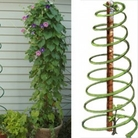 Spiral Plant Support x1