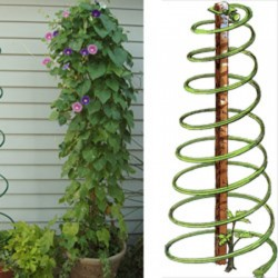 Spiral Plant Supports x3