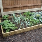 Timber Raised Bed Kit - Deluxe 1.2m x 2.4m