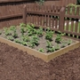 Timber Raised Bed Kit - Standard 1.2m x 2.4m