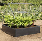 Canopy support for the raised bed
