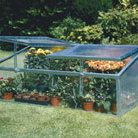 Double lid cold frame