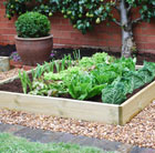 Timber grow bed